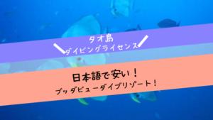 タオ島ダイビングライセンス
