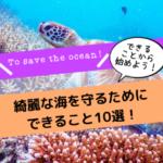 綺麗な海を守る